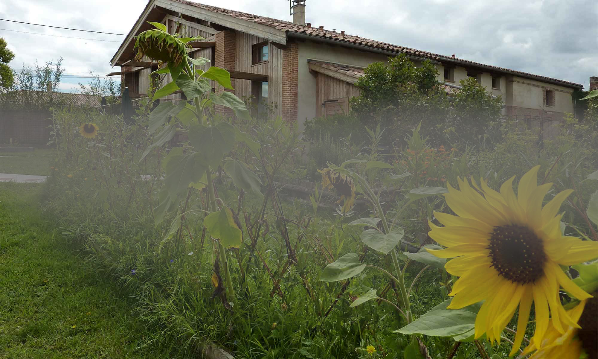 Gites écologiques de Baugnac à Toulouse.
