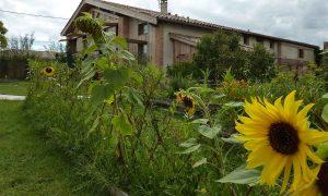 Jardin écogites de Toulouse à Lavalette.